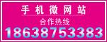 中国必全手机微网站