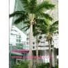 广州市锦润园林仿真椰子树厂家