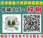 廊坊宇森农业开发有限公司