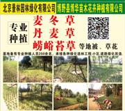 北京景林园林绿化有限公司