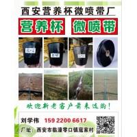 陕西西安营养钵微喷带厂生产各种型号微喷带、营养钵、穴盘
