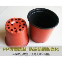 pp双色盆