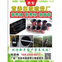 农用黑水带 灌溉黑水带厂家直销 现货供应 西安微喷带厂专供