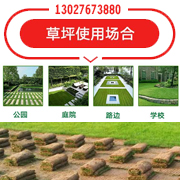 河南许昌市远硕草坪种植有限公司