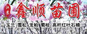 江苏南京鑫顺苗圃