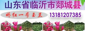 山东临沂郯城县三永农民种植专业合作社