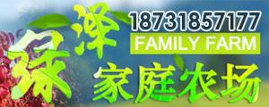 冀州市绿泽家庭农场