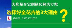 青州市好全花卉苗木种植专业合作社