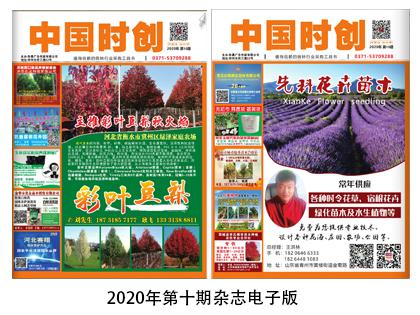 2020年第十期杂志电子版
