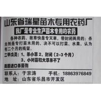 二甲戊灵杀虫剂 树苗杀虫剂供应 瑞星苗木农药场