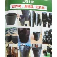 冠县轩宸塑料制品有限公司经营营养钵、美植袋、双色盆