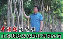 山东明烁农林科技有限公司