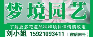 上海梦境园艺