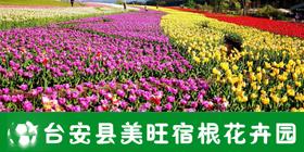 台安县美旺宿根花卉园