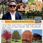 宁波市奉化区山水园林